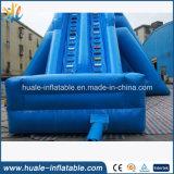 Gran tobogán de agua inflable personalizada, diapositivas Dragón de agua para los niños