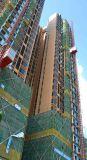 Grue d'ascenseur d'élévateur de construction