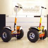 Автомобиль электрической собственной личности вездехода ветра балансируя с батареей лития