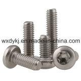 Edelstahl-Befestigungsteil Hexalobular Kontaktbuchse-Wannen-Kopf-Maschinen-Schrauben-Lieferant von China N-Düngung E 25-109