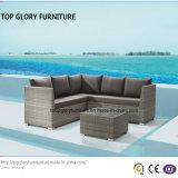 Geöffnete spinnende moderne Sofa-Garten-Möbel (TG-801)