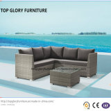 Mobilia moderna di tessitura aperta del giardino del sofà (TG-801)