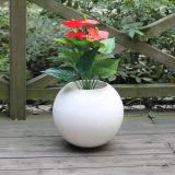Plantador decorativo redondo da fibra de vidro Fo-186 para interno e ao ar livre
