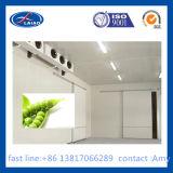 Congélateurs de réfrigérateur de chambre froide d'usine de nourriture et de salle de traitement de congélateurs