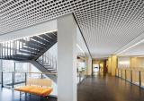Het aluminium Opgeschorte Net van het Plafond voor de Decoratie van het Plafond van het Open Gebied