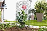 Collegare esagonale di Sailin per la rete fissa del giardino