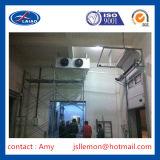 食糧工場冷蔵室およびフリーザーの処理部屋のスリラーのフリーザー