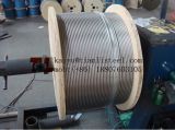 Câble d'acier inoxydable de qualité de Tianli