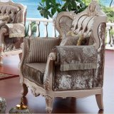 Sofà del salone per mobilia domestica (D955)