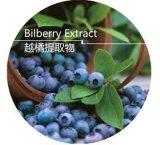 食糧および飲料のためのアントシアニンBilberryのエキス