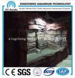 Precio de acrílico material de acrílico transparente modificado para requisitos particulares del tanque del sello
