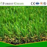 잔디를 정원사 노릇을 하는 건강하고 쉬운 임명