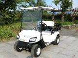 ゴルフコースのための2 Seaterのゴルフ車