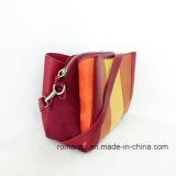 Хозяйственная сумка выдвиженческих женщин сумок PU повелительниц кожаный (NMDK-040701)