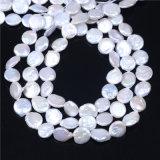 La perla de agua dulce cultivada moneda rebordea calidad del AA de la talla de 12-13m m
