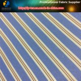 Prodotto intessuto banda tinto rapido del filato di poliestere delle merci per l'indumento (S45.115)