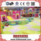 De BinnenSpeelplaats van de Kinderen van het Thema van Troup van het circus voor Verkoop