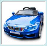 Elektrische Auto's met de Banden van EVA