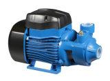 Pomp van het Water van de Drijvende kracht van het messing de Kleine Elektrische Qb60 0.5HP