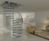 Paso de progresión de la escalera de la escalera de acero moderna/de madera sólida