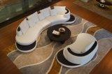 Mobília moderna da sala de visitas com o sofá de canto para o jogo de couro real do sofá