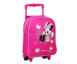 Backpacks школы завальцовки для девушок (BSH20551)