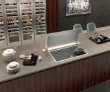 [فرش يدا] من [بول] مطبخ أكريليكيّ خزانة تضمينيّة