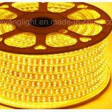 높은 루멘 SMD5050/5730 RGB 12V 220V LED 지구 빛 3000k 60LEDs/M 옥외 아래 카운터 LED 지구 빛