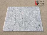 Possedere le mattonelle di pavimento di marmo grige cinesi di Carrara della cava per il rivestimento parete/della pavimentazione con la pietra cinese di origine