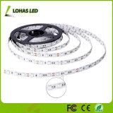 indicatore luminoso di striscia di 220V 12V RGB LED con il regolatore a distanza