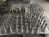 Bomba de engranajes internos de plástico de la máquina de moldes de inyección