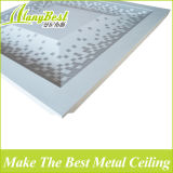 2017 materiais internos de alumínio do painel de teto do teste padrão novo