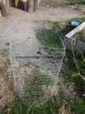 金網の網か六角形ワイヤー網