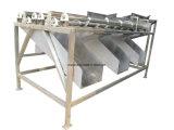 Palmier dattier chaud de la vente 2017 traitant et machine à emballer