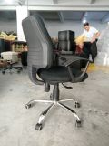 5 años de la calidad de silla del personal (D02)