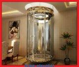 Venda quente do elevador da HOME da casa de campo do passageiro do baixo preço de Vvvf