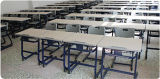 単一のSchool DeskおよびMetal FrameのChair