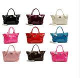 La nueva señora Handbags/monedero, manera calificó el monedero/los bolsos