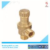 Conexión de cobre amarillo 8-10bar de Scew de la válvula de seguridad