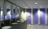 HPLのパネルによってなされるヨーロッパ式のキュービクルの洗面所
