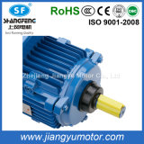Sale entier 460V Three-Phase Asynchronous Motors pour Outdoor Axial Fan