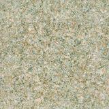 Het graniet kijkt de Ceramische Tegel van het Porselein van de Vloer Tegel Verglaasde