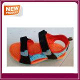 Buenos zapatos de la calidad de la sandalia en Venta