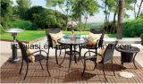 /Rattan esterno/presidenza & Tabella del rattan mobilia del giardino/patio/hotel impostate (HS 1025C&HS6080BDT)