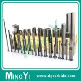 Carbide het Van uitstekende kwaliteit van de douane om de Hoofd Vierkante ProefStempel van de Basis