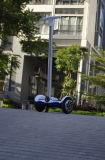 Samsung-Lithium-Batterie-erfinderischer mini grüner Transport-elektrischer Roller