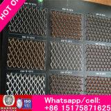 Rete metallica perforata decorativa per la rete metallica decorativa delle pareti (rivestimento della parete)