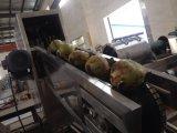 Machine de découpage de noix de coco
