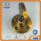 La Bi del acciaio al carbonio della flangia cieca ha forgiato la flangia (KT0345)