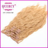 加工されていない工場供給の高品質のバージン毛の拡張のすべてのカラークリップ